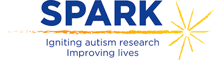 The logo for SPARK; a blue SPARK in uppercase letters sits on top of a yellow shooting star. Underneath reads,